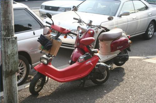 Moped vs Scooter