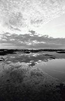 Hvordan ta svart & hvit bilder med Canon strøm skutt G2 4.0