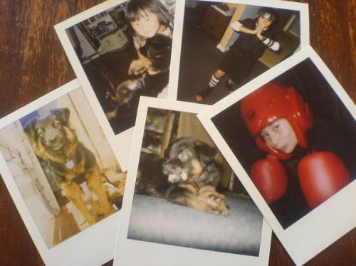 Hvordan å sette filmen i et Polaroid-kamera