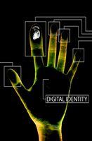 RFID Passport farene